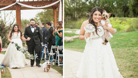bride walking down the isle with her puppy ring bearer.