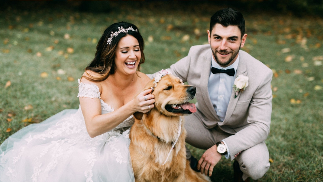 Bride and groom posing with golden retriever putting on floral crown laughing smiling bride and groom in grey suit