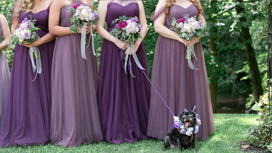 bridesmaids in varying shades of purple hue tulle dresses dog wedding flower purple collar wedding day