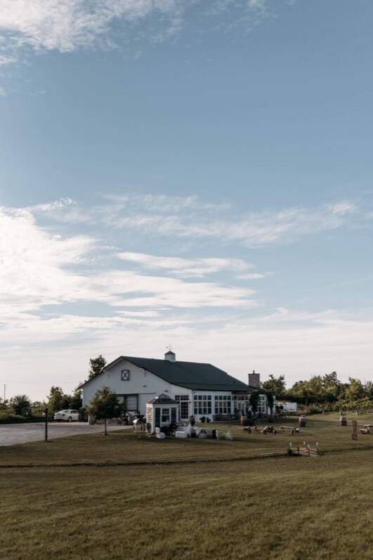 Farmhouse wedding reception vineyard in the summer grassy medow reception